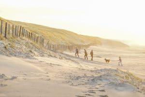 Beach and dunes at Katwijk