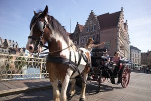 Horse and carriage ride in Gent