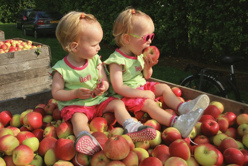 Kids and apples