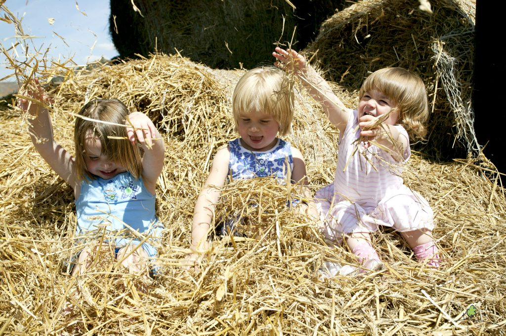 Feather Down Farm Children in Hay