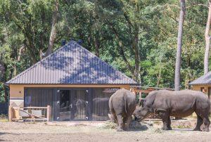 Safari Resort Lodge Plus Beekse Bergen